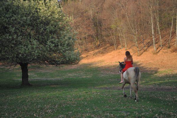 Equitazione Lolo Horses